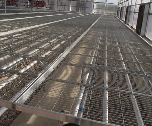 移动式苗床与固定式苗床
