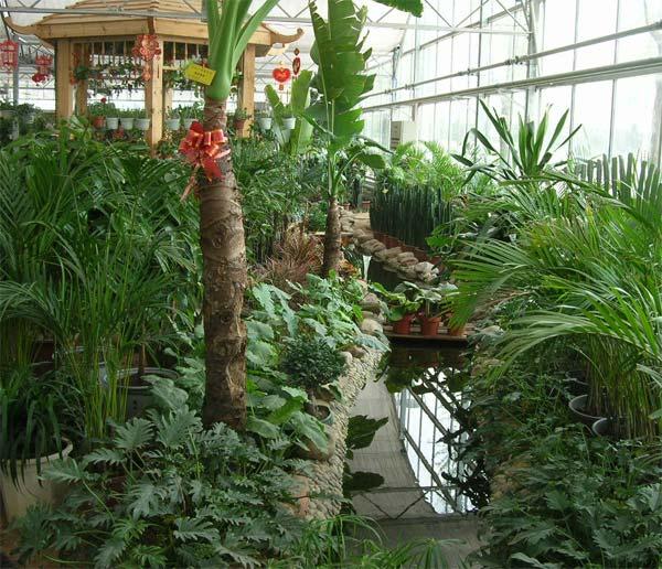 观光展览温室
