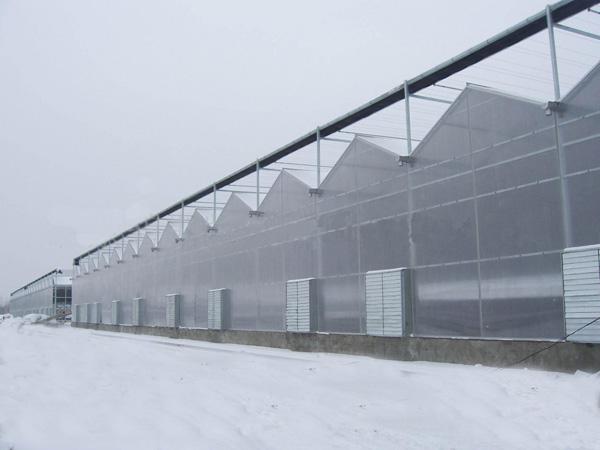 连栋智能温室大棚