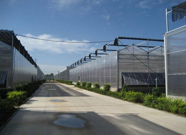 阳光板智能温室大棚