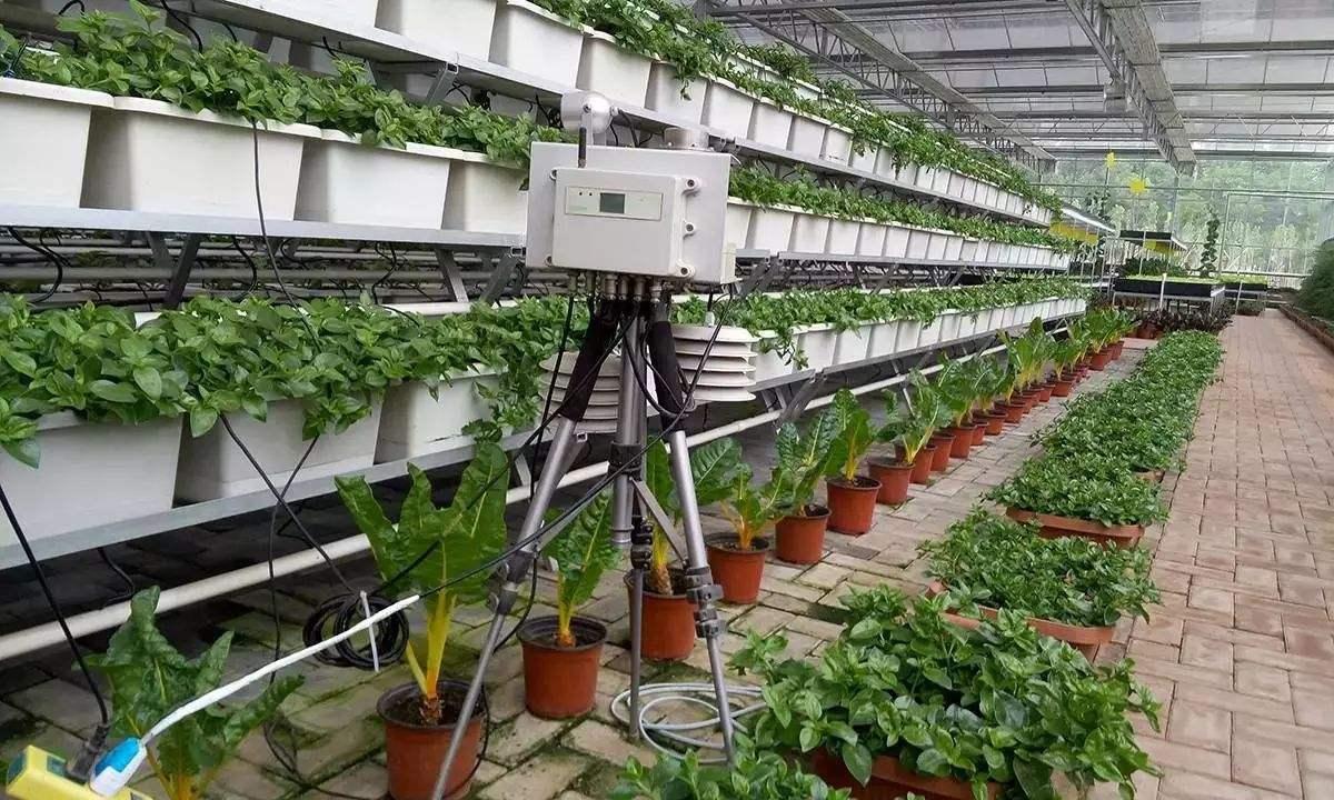 智慧农业物联网